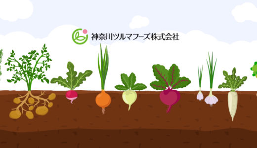 こんにゃく芋の試験栽培について